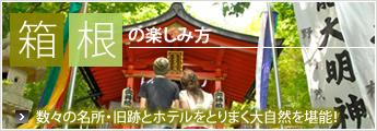 箱根の楽しみ方